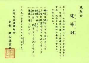 Zásady Ryusyokai Goju Ryu karate